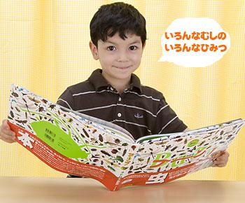 日本語版監修/養老孟司・ブーン!オ・ド・ロ・キ虫百科
