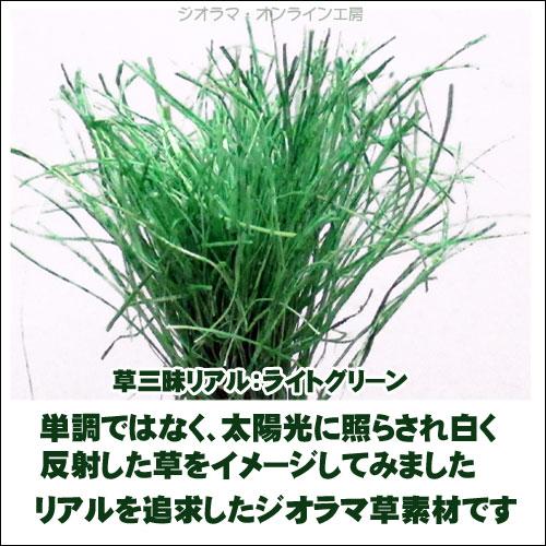 草三昧ライトグリーン紹介