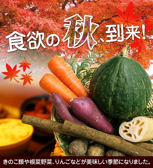食欲の秋到来10月のオススメ無農薬野菜、果物、きのこ類