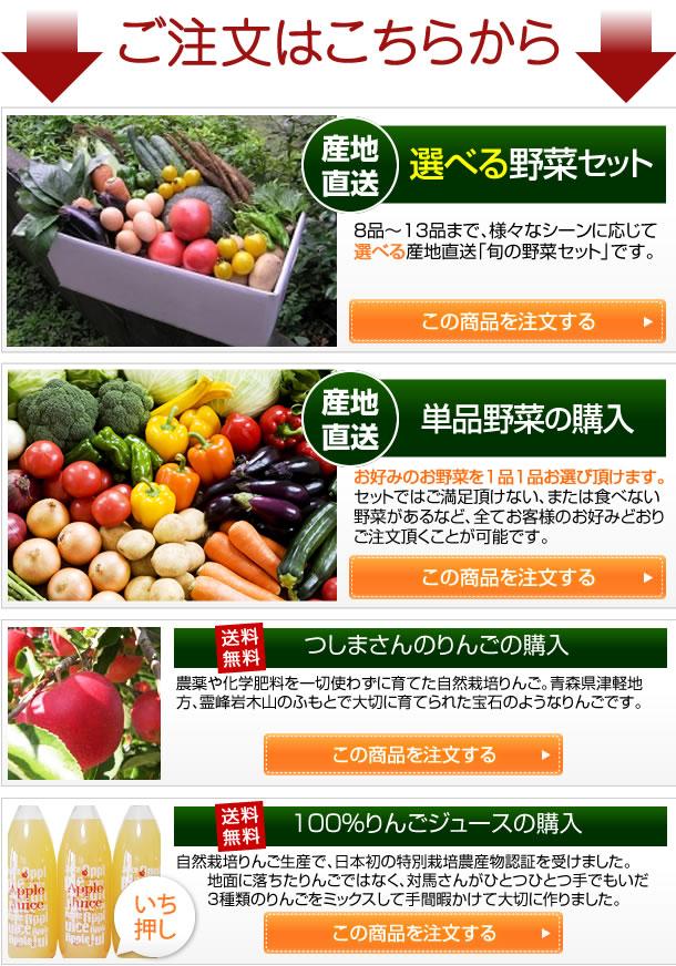 産地直送選べる野菜セット 産地直送野菜の単品購入 つしまさんのりんご購入 100%りんごジュースの購入