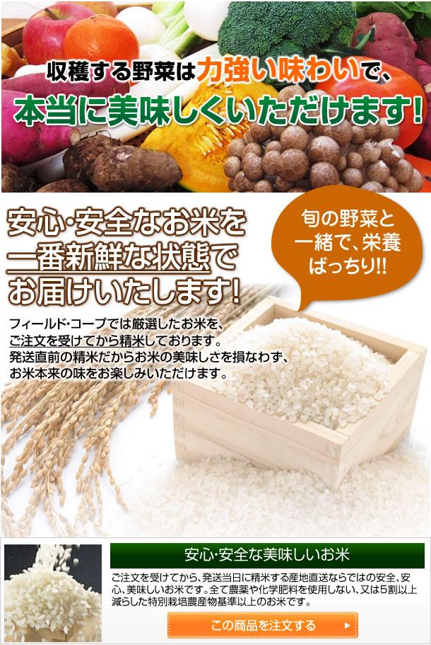 収穫する野菜は力強い味わいで本当に美味しく頂けます!!またお米もオススメです。こんな心配ありませんか?放射能の問題は大丈夫なのかな・・・?お任せ下さい。フィールドコープがお届けするお米は、千葉県産のものになります。千葉県は、全国有数の早場米産地であり、放射能汚染による農産物のモニタリング調査を県及び市町村で実地しています。その結果千葉県のほぼ全ての産地で、「検出せず」の結果が出ている安心・安全なお米です。この数値は千葉県のホームページで、お客様ご自身でご確認頂くこともできますよ。誰がどんな風に作ったお米なの?フィールドコープがお届けするお米は、生産地、生産者、栽培方法、品種をインターネット上で全て公開しており、特別栽培基準以上の厳しいチェックをクリアーしたお米です。さらにお届けの際には、精米した担当者名も明記。誰が生産して、誰が精米したのか・・・、全てフィールドコープの担当者が責任を持って対応します。店頭でお米を買って、家に持って帰るまでの重い苦労も必要なし、注文の翌朝にはご自宅の玄関先までお届けするお米当日注文、当日精米発送の、お米宅急便、大勢の方に、「安全・安心・お手軽・簡単」に美味しいお米を楽しんでいただけたら幸いです。是非この機会にご利用下さい。