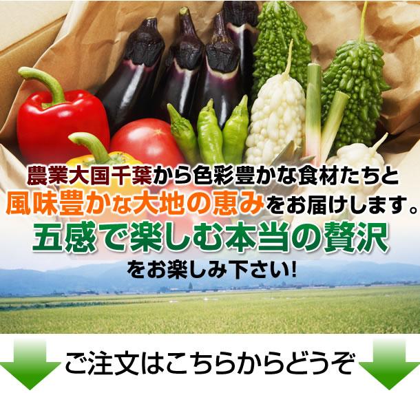 農業大国千葉から彩り豊かな食材たちと風味豊かな大地の恵みを宅配します。五感で楽しむ本当の贅沢をお楽しみ下さい。