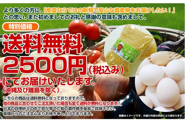 より多くの方に産直ならではの、新鮮で安全な無農薬野菜お届けしたいとの思い、また初めましての御礼と感謝の意味を含めまして、特別価格、送料無料2500円(税込)にてお届けします。(沖縄及び離島は除きます)コチラの商品は、送料無料となっておりますので、他の商品と合わせてご注文頂いた場合も送料が無料となります。日本の四季折々の中で、匠が育てた旬の農産物を是非ご賞味下さい。皆様からのご注文を心よりお待ち申し上げております。