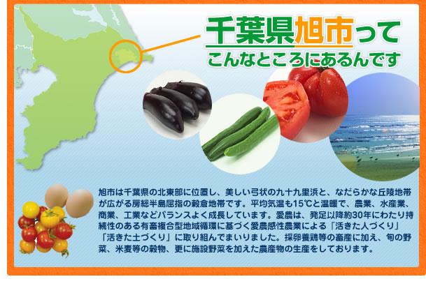 千葉県旭市ってこんなところにあるんです。旭市は千葉県の北東部に位置し、美しい弓状の九十九里浜と、なだらかな丘陵地帯が広がる房総半島屈指の穀倉地帯です。平均気温も15℃と温暖で農業、水産業、商業、工業などバランスよく成長しています。愛農は発足以降約30年以上にわたり持続性のある有畜複合型地域循環農法による「活きた人づくり」、「活きた土づくり」に取り組んで参りました。採卵養鶏に加え、旬の無農薬野菜、米麦などの穀物、更に施設野菜を加えて農産物の生産をしております。