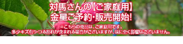 対馬さんの【ご家庭用】金星ご予約・販売開始!