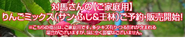 対馬さんの【ご家庭用】りんごミックス(サン・ふじ&王林)ご予約・販売開始!
