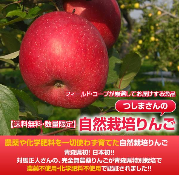 フィールド・コープが厳選してお届けする逸品 【送料無料・数量限定】つしまさんの自然栽培りんご 農薬や化学肥料を一切使わず育てた自然栽培りんご 青森県初! 日本初!!対馬正人さんの、完全無農薬りんごが青森県特別栽培で農薬不使用・化学肥料不使用で認証されました!!