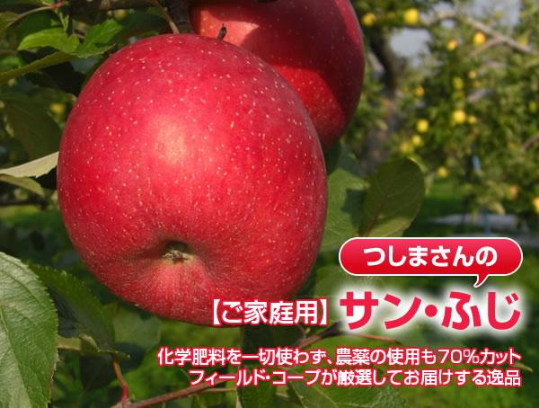 【ご家庭用】サン・ふじ 化学肥料を一切使わず、農薬の使用も70%カット フィールド・コープが厳選してお届けする逸品