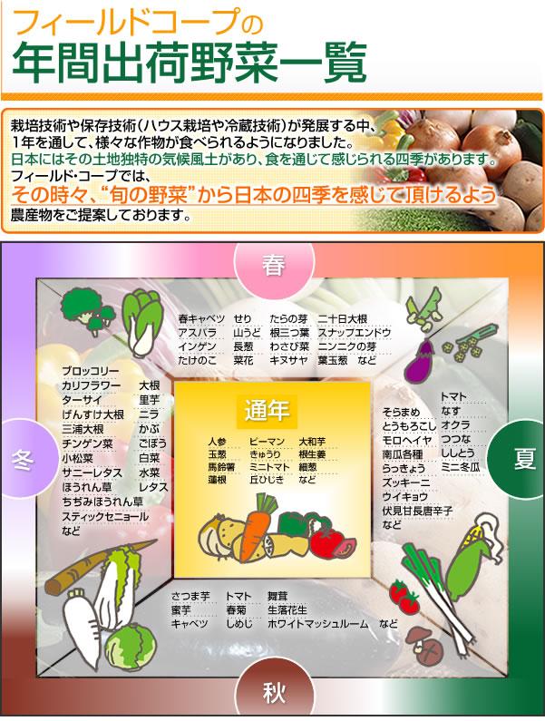 年間出荷野菜一覧 栽培技術や保存技術(ハウス栽培や冷蔵技術)が発展する中、1年を通して、様々な作物が食べられるようになりました。日本にはその土地独特の気候風土があり、食を通じて感じられる四季があります。フィールド・コープでは、その時々、旬の野菜から日本の四季を感じて頂けるよう農産物をご提案をしております。●春 春キャベツ、アスパラ、菜花、二十日大根、インゲン、スナップエンドウ、たけのこ、山うど、たらの芽、せり、根三つ葉、わさび菜、長葱、キヌサヤ、ニンニクの芽、葉玉葱など●夏 トマト、なす、そらまめ、とうもろこし、伏見甘長唐辛子、ズッキーニ、ウイキョウ、南瓜各種、オクラ、モロヘイヤ、つつなししとう、ミニ冬瓜、らっきょう、など●秋さつま芋、蜜芋、キャベツ、生落花生、トマト、春菊、しめじ、舞茸、ホワイトマシュルーム、●冬 ブロッコリー、スティックセニョール、カリフワラー、大根、里芋、かぶ、ごぼう、白菜、チンゲン菜、小松菜、ほうれん草、ちぢみほうれん草、ターサイ、ニラ、水菜、レタス、サニーレタス、げんすけ大根、三浦大根、など●通年 人参、玉葱、馬鈴薯、蓮根、ピーマン、きゅうり、ミニトマト、丘ひじき、大和芋、根生姜、細葱