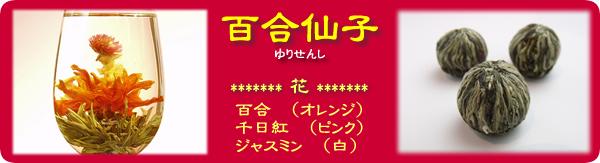 工芸茶-百合仙子