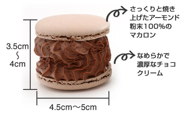 【トゥンカロン】チョコ味_商品説明