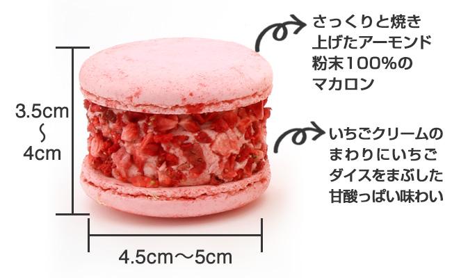 【トゥンカロン】いちご味_商品説明