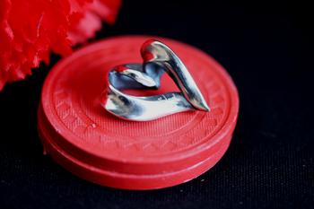 RIBBON HEART TOP