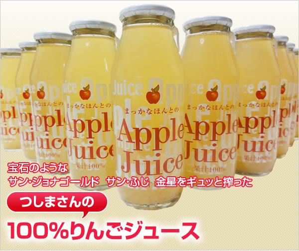 自然栽培、無農薬りんごのみでつくった、【送料無料】対馬正人さんの無農薬100%りんごジュース720ml